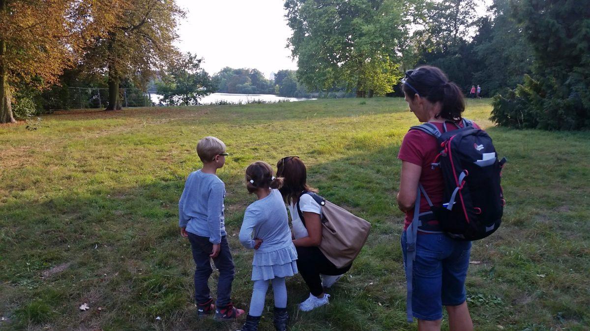 "Projekt ""Let´s go – Familien, Kids und Kitas""  – Freude an Bewegung in Natur"