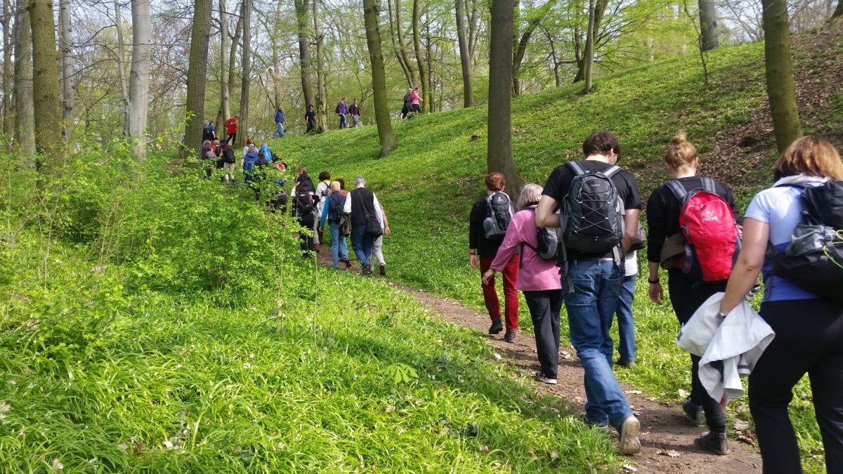 Tag des Wanderns am 14. Mai – Wandern verbindet (Pressemitteilung Deutscher Wanderverband)