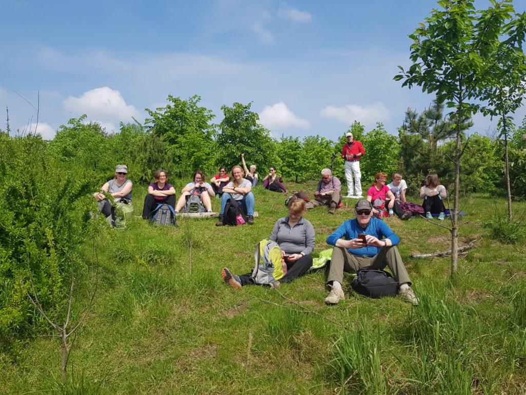 Rast auf der ehemaligen Deponie Wannsee