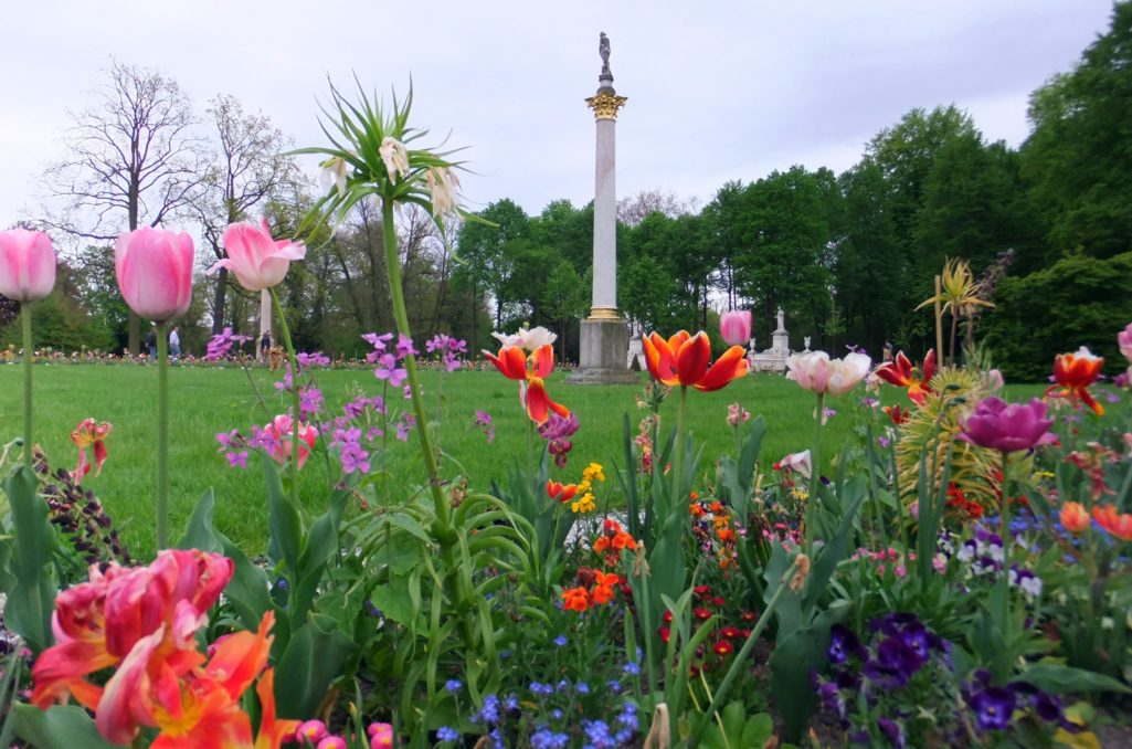 Blütenpracht im Park Sanssouci