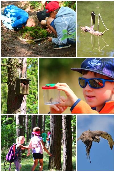 Feriencamp Waldabenteuer auf dem Großen Ravensberg – Natur pur!